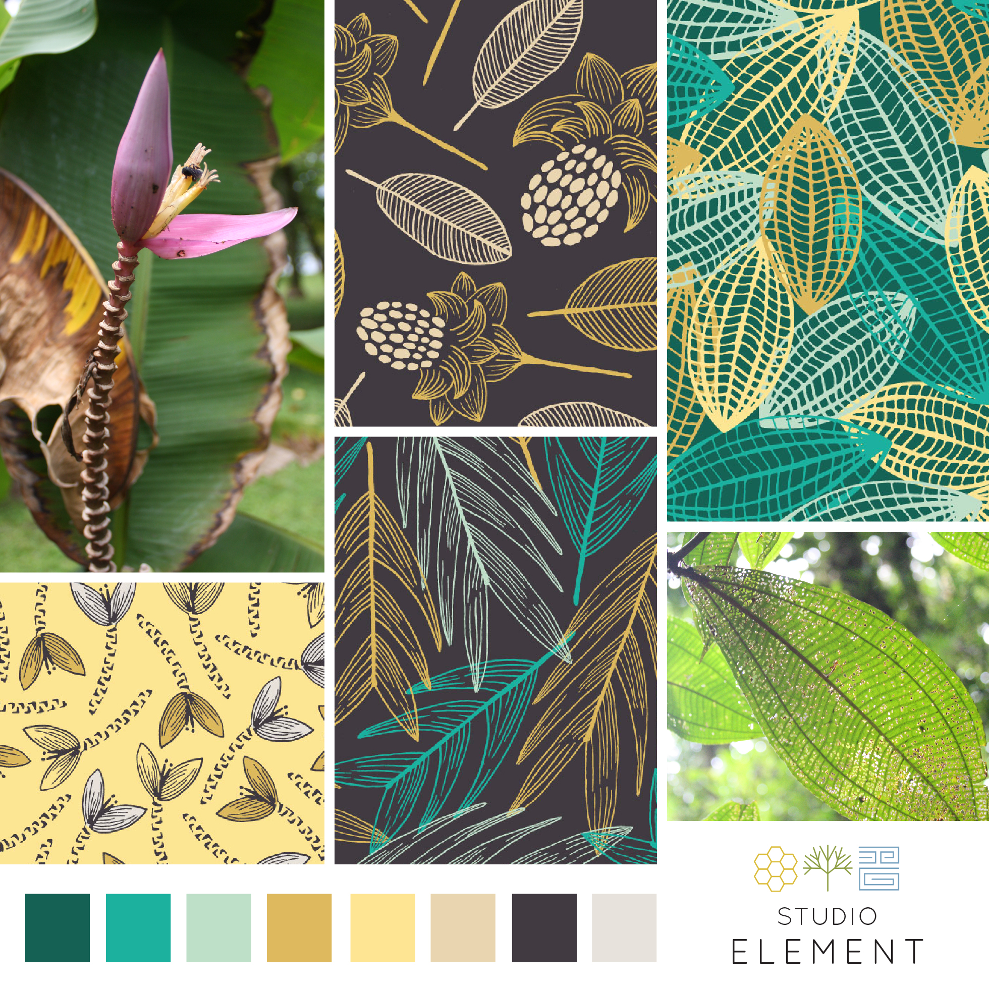 pattern collection escape to the tropics snapshot